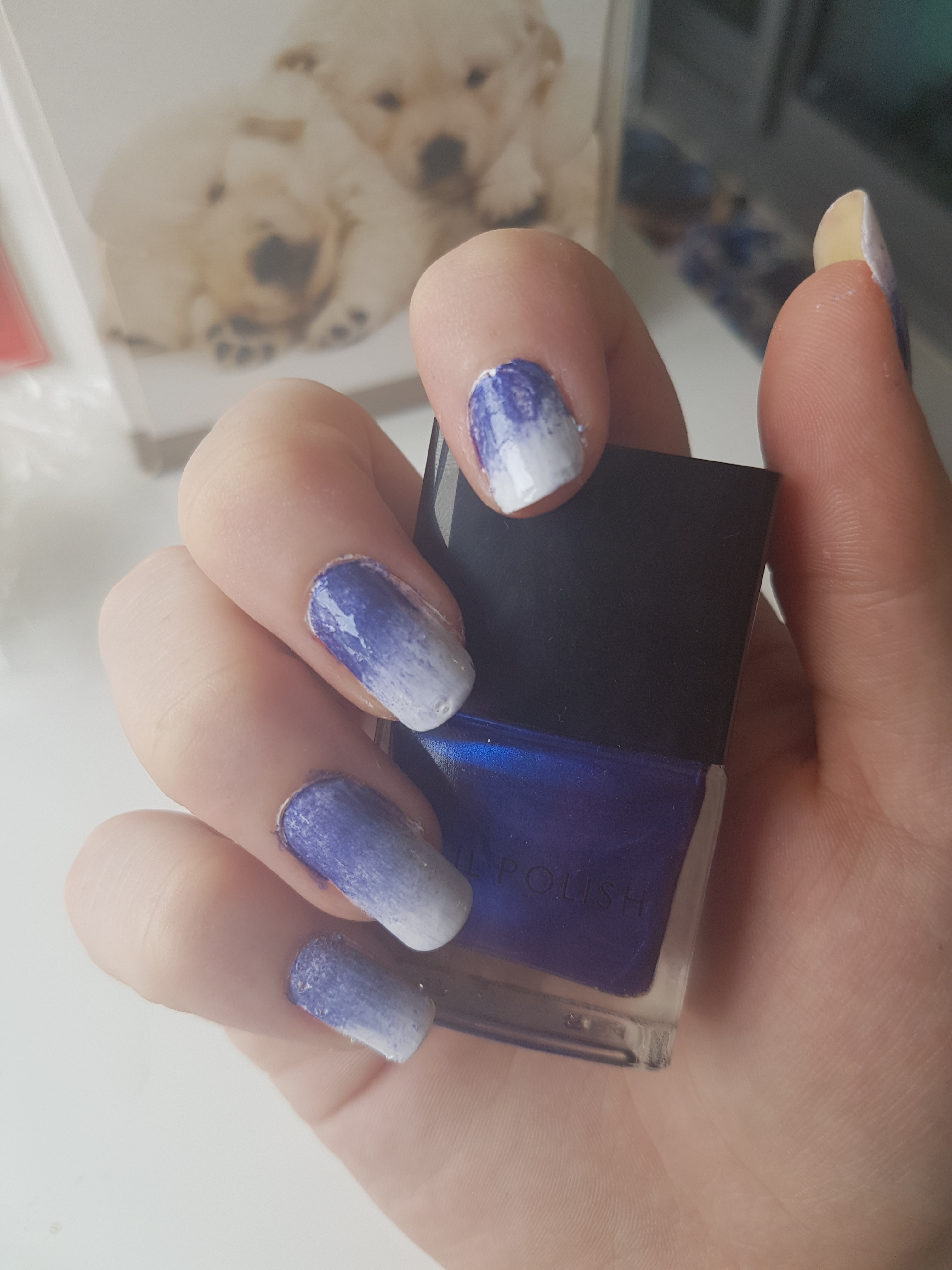 How to create Ombre Nails - The Nail Chronicle